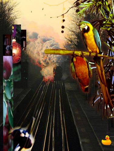 Train Canard